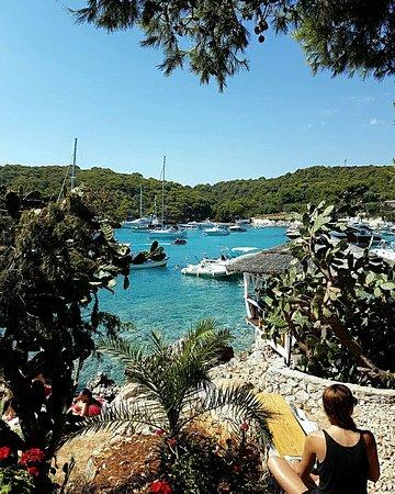 Hvar Island, Kroasia: Laganini Lounge bar & Fish House