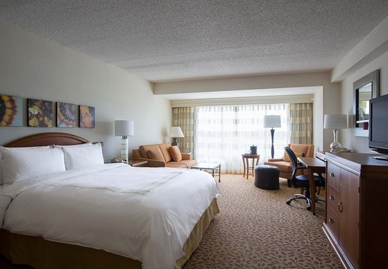 Irving, TX: King Guest Room - Lake View