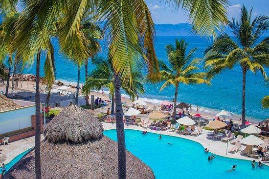 Plaza pelicanos club beach resort puerto vallarta - Fotos de pelicanos ...