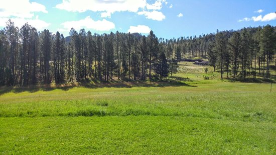 Custer Mountain Cabins and Campground: 20160820_094658_large.jpg