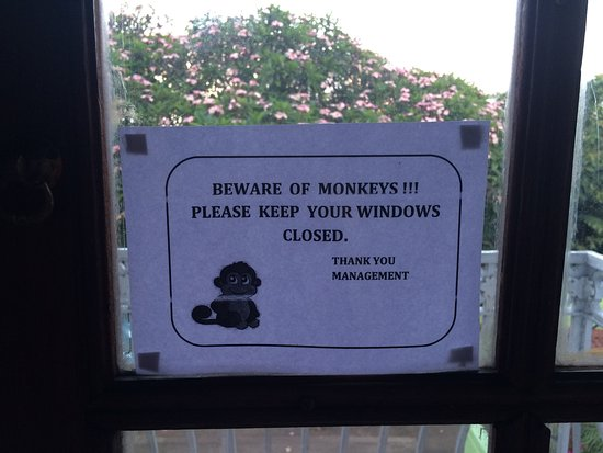 Queen's Hotel: The interesting sign about monkeys!