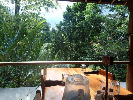 Ian Anderson's Caves Branch Jungle Lodge: Our first say at lunch. You can hear the river.
