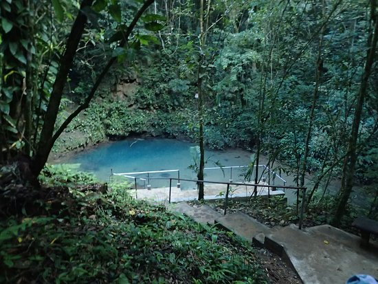 Ian Anderson's Caves Branch Jungle Lodge: This place was about a half hour walk away, the Blue Hole!