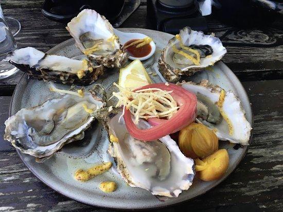 Isle of Gigha, UK: Oysters