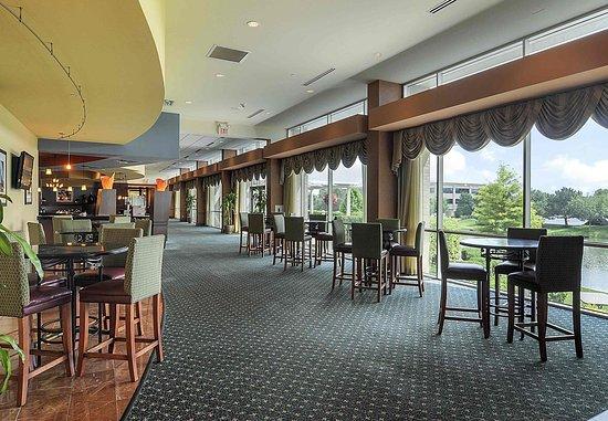 Burr Ridge, Ιλινόις: Bar – Lounge Area