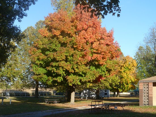 Sabetha, KS: CAMPGROUND IN THE FALL