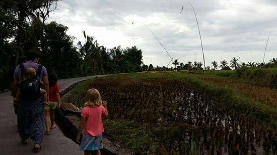 Rangdu, Indonesia: FB_IMG_1472142689413_large.jpg