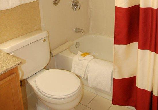 ซานมาเทโอ, แคลิฟอร์เนีย: Penthouse Suite Bathroom