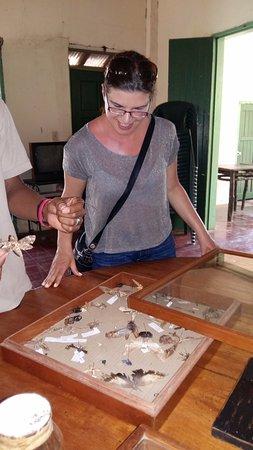 Гранада, Никарагуа: Montibelli insects reserve