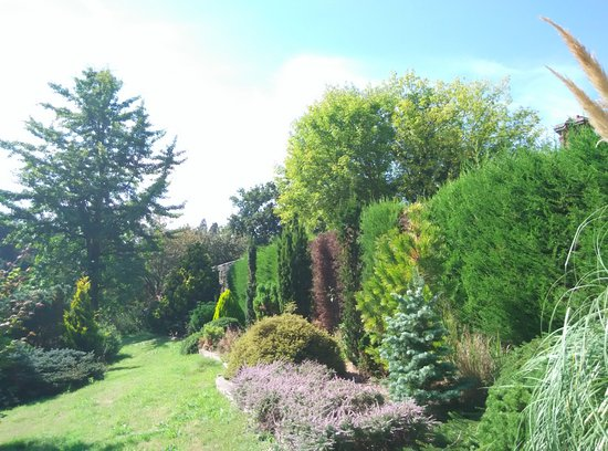 Goudhurst, UK: Bedgebury Pinetum