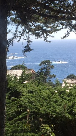 Hyatt Carmel Highlands: A great view from the room