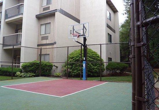 เพลนวิว, นิวยอร์ก: Sport Court