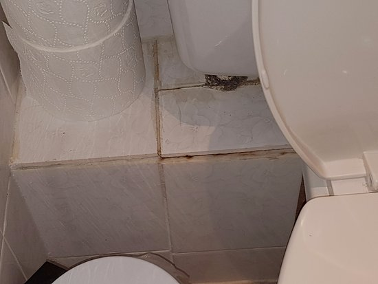 Holywell, UK: By toilet which was full of stained limescale