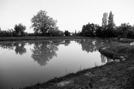 Jonquieres, França: Guinguette des estagniers
