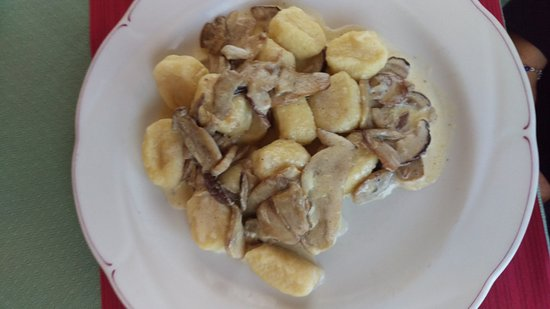 Santo Stefano di Cadore, Italy: gnocchi con porcini a km zero