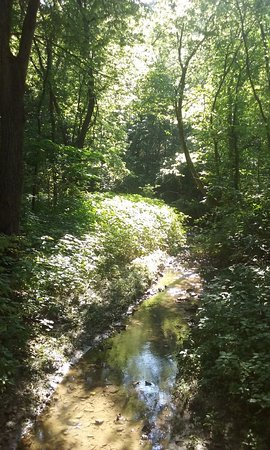 Saint Joseph, Миссури: A shot of one of the scenic streams. Photo doesn't do it justice.