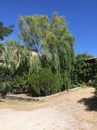 Giardino Donna Lavia: photo4.jpg