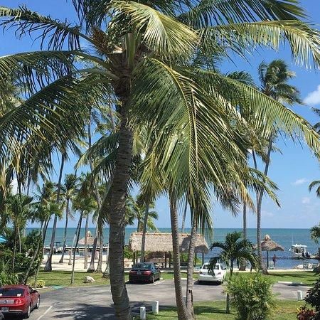 Breezy Palms Resort: photo7.jpg
