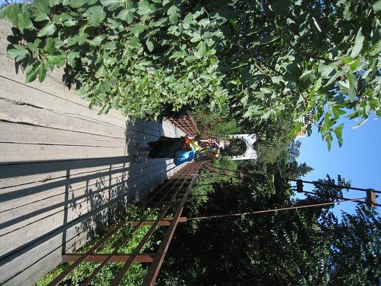 Фотография Подвесной мост через р. Дагомыс
