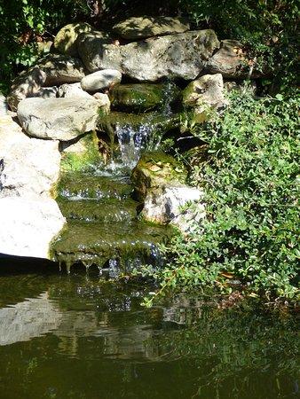 Foto di saint didier sur chalaronne foto di saint didier - Les jardins aquatiques saint didier sur chalaronne ...