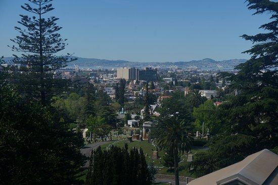 โอกแลนด์, แคลิฟอร์เนีย: From the top of one of the hills.