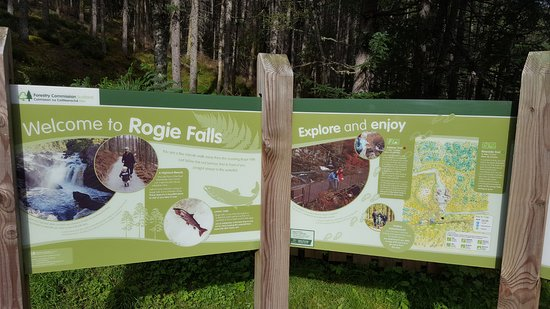 Contin, UK: Rogie Falls Info Sign