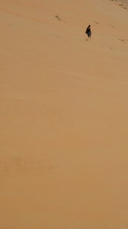 카스르 알 사랍 데저트 리조트 바이 아난타라 사진