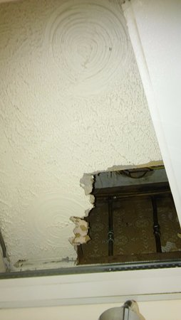 Lyndene Guest House: hole in the shower cubicle ceiling