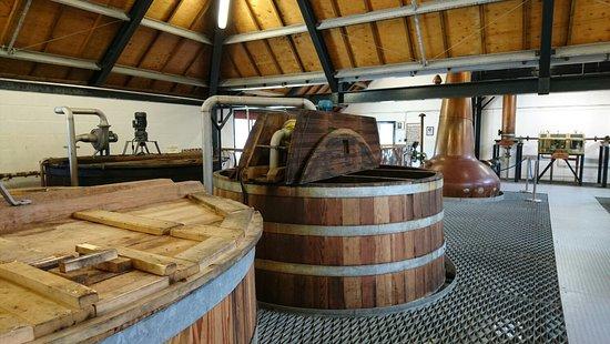 Lochranza, UK: DSC_0353_large.jpg