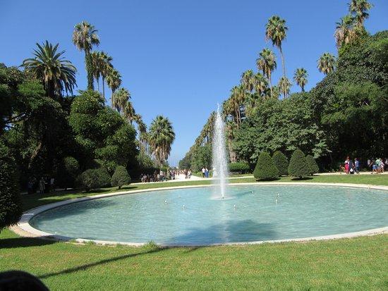 Alger, Argelia: L'allée principale du jardin