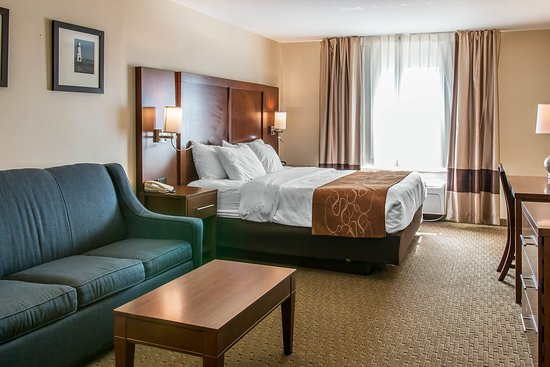 Comfort Suites Wixom: King room