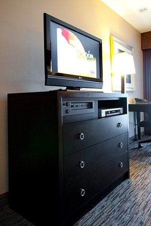 Holiday Inn Express San Clemente North: Flat Panel TVs with HBO in all rooms