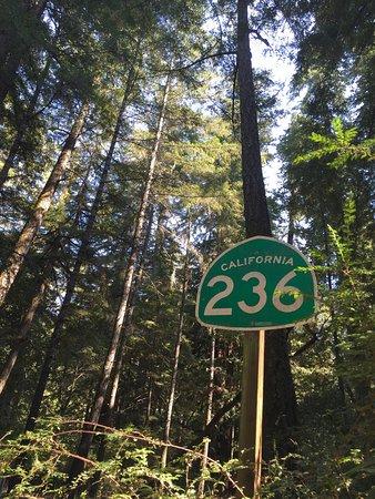 Boulder Creek, CA: photo2.jpg