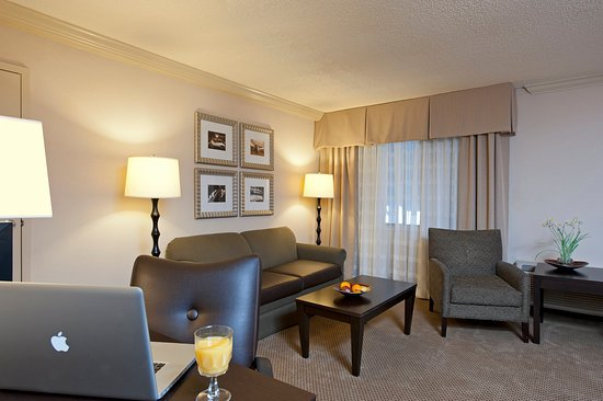 Junior Suites Living Area - Holiday Inn Itasca near Schaumburg