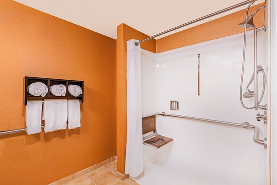 Morgan Hill, CA: ADA/Handicapped accessible Guest Bathroom with roll-in shower