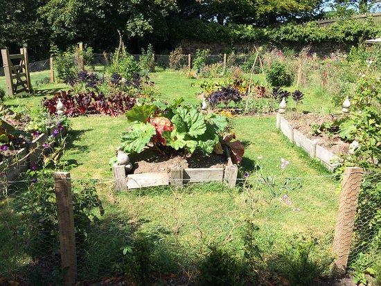 Newquay, UK: Gemüsegarten in Trerice