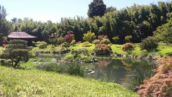Generargues, Francia: 20160823_140717_large.jpg
