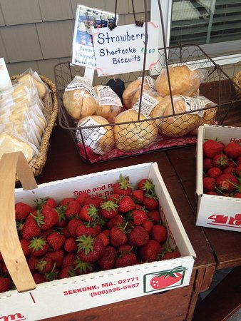 Seekonk, MA: Strawberries we picked