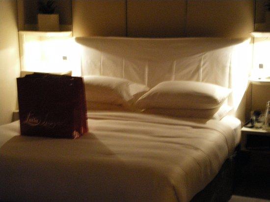 Park Hyatt Milan: Dejligt værelse