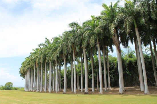 Four Seasons Resort Costa Rica at Peninsula Papagayo: Before the entrance