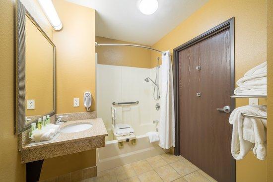 Chippewa Falls, Ουισκόνσιν: Wheelchair Accessible Bathroom in ADA Guest Room