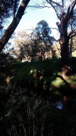 Melrose, أستراليا: Lovely scenery