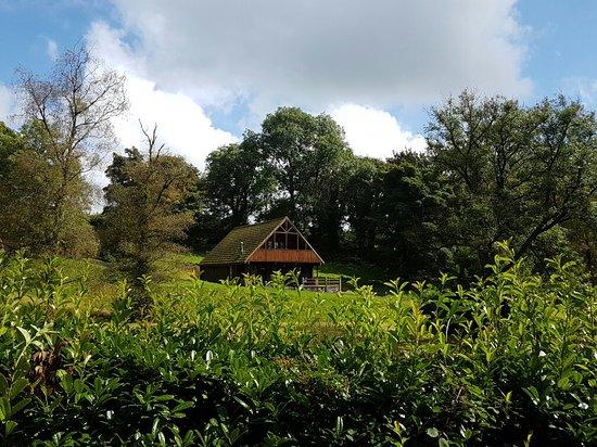 Llanfynydd, UK: Pretty Pantglas Hall