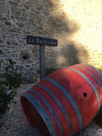 Chateau de la Bourdaisiere: photo0.jpg