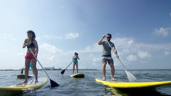 Isla del Padre Sur, TX: Stand Up Paddleboarding, South Padre Island