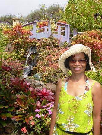 Kula, Hawaje: garden in lavender farm