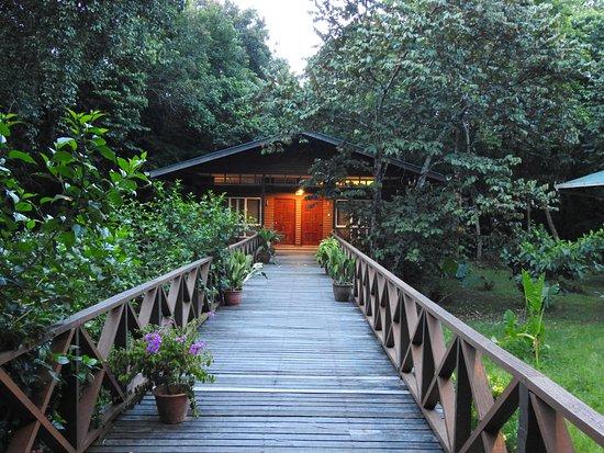 Borneo Nature Lodge Photo