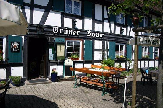 Rheinau, Allemagne : Grüner Baum