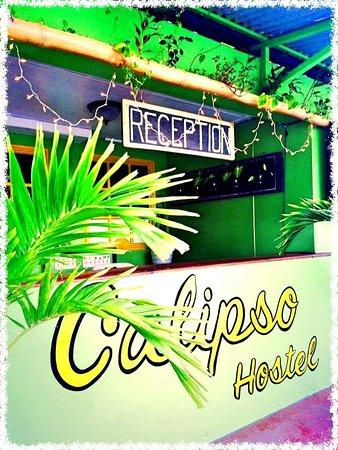 Calipso Hostel: recepción