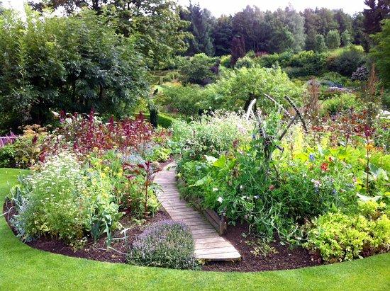un coin harmonieux picture of jardin de berchigranges. Black Bedroom Furniture Sets. Home Design Ideas